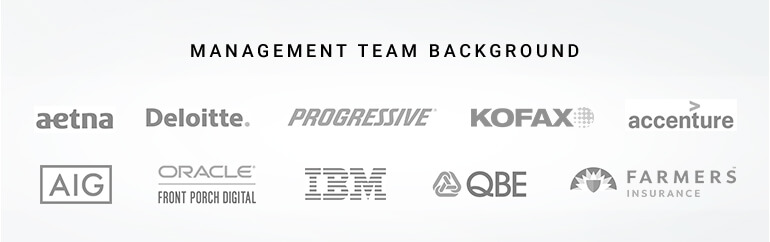 management team background